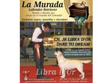 Libra D'OR Dare To Dream