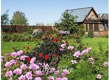 А иногда можно погулять и в саду...