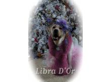 Libra D'OR Beauty Sign