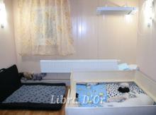 комната для щенков и родовая